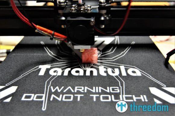 Der erste Druck mit dem Tevo Tarantula