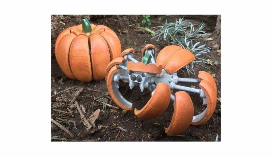 Halloween Kürbis Spinne Transformer