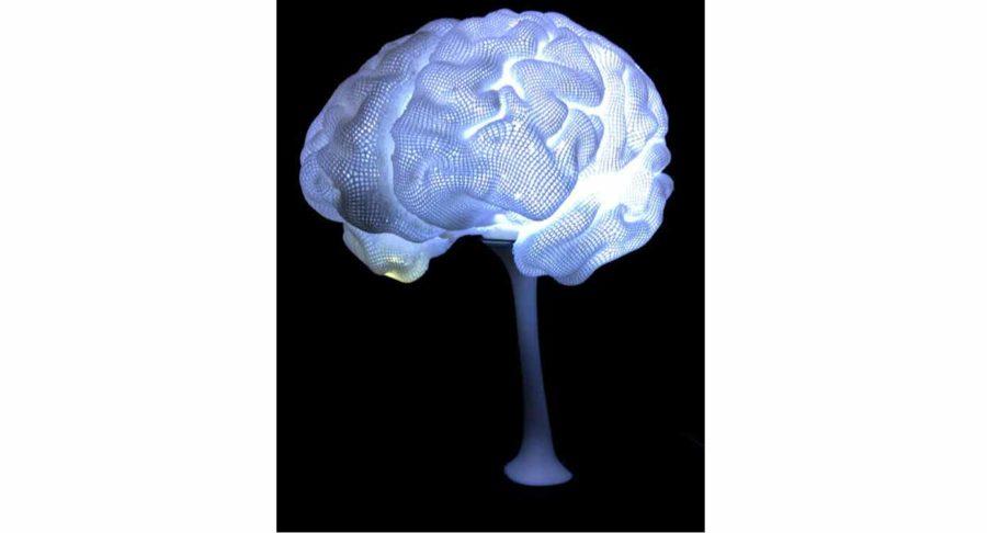 Gehirn-Lampe für Dichter und Denker (Bildquelle: cc3psae/myminifactory)